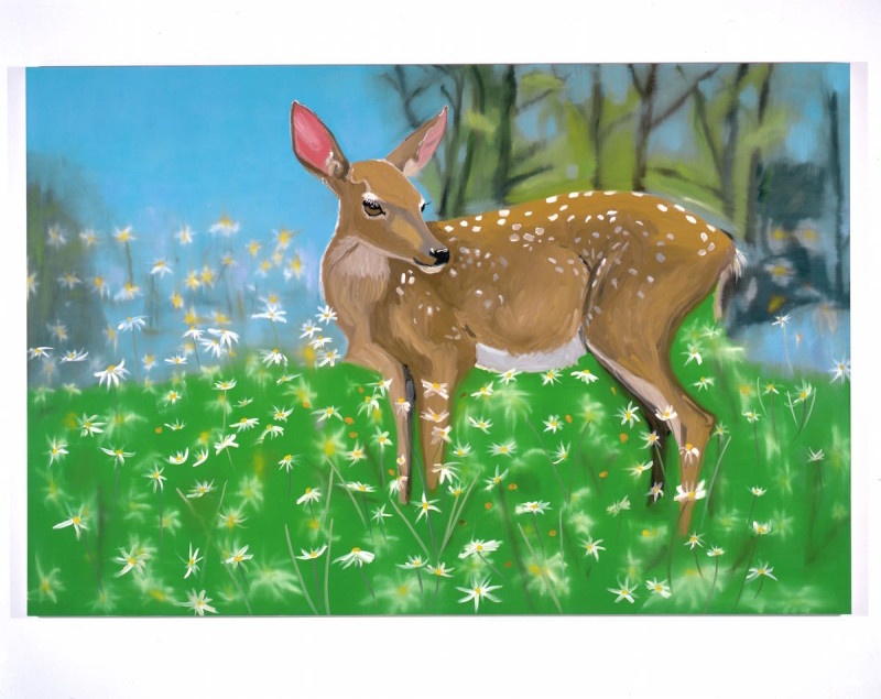 15_14_Ann_Craven_DEAR (THE_LIFE_OF_THE_FAWN)_72x108_in_2004