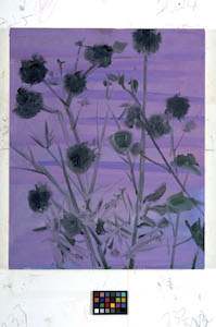 ESTATE_Ann Craven, Weed Flower (Purple Water), 2011, 22 x 18 in_JPEG