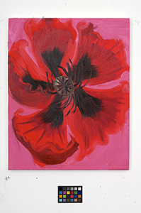 Ann Craven, 01_Poppy-news