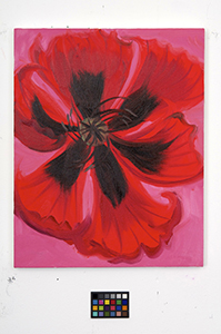 Ann Craven, 02_Poppy-news