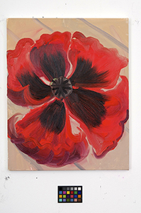 Ann Craven, 03_Poppy-news