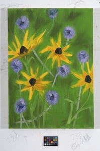 Ann Craven, 03_Brown Eyed Susan (8-23-11), 2011, 24 x 20 in_JPEG