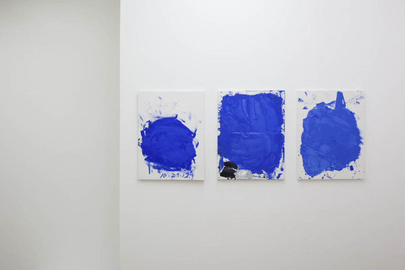 CRAVEN_Untitled (Palettes - Naked, Tagged), 2013-14_2015_Installation View_3
