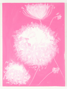 Ann Craven, 04_Queen Ann's Lace (Pink, Cushing, 8-24-15, 5.45PM), 2015, 24 x 18 in_JPEG