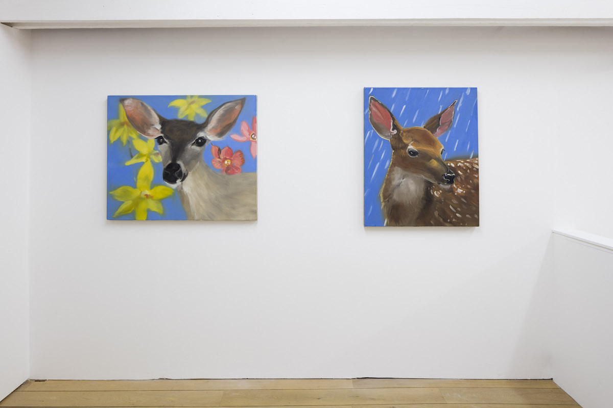 CRAVEN_Animals 1999-2017_2017_Installation view_21