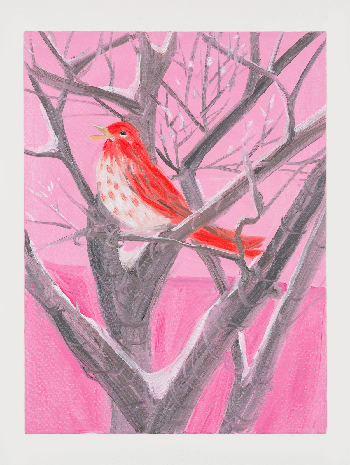 01-Purple Finch (in Snow at Sunset), 2017-1