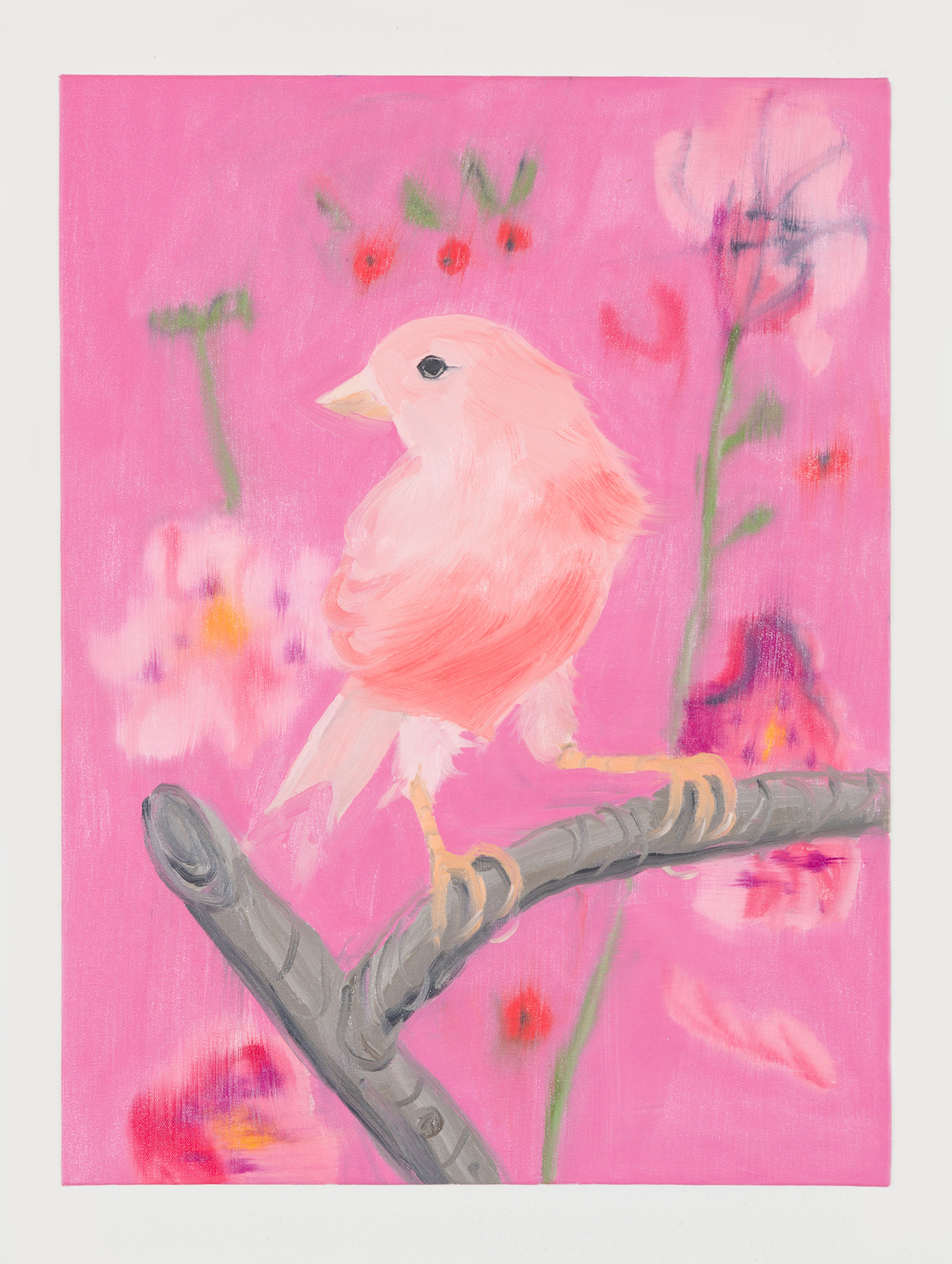 05-Pink Canary (Stepping Out on Pink), 2017-1
