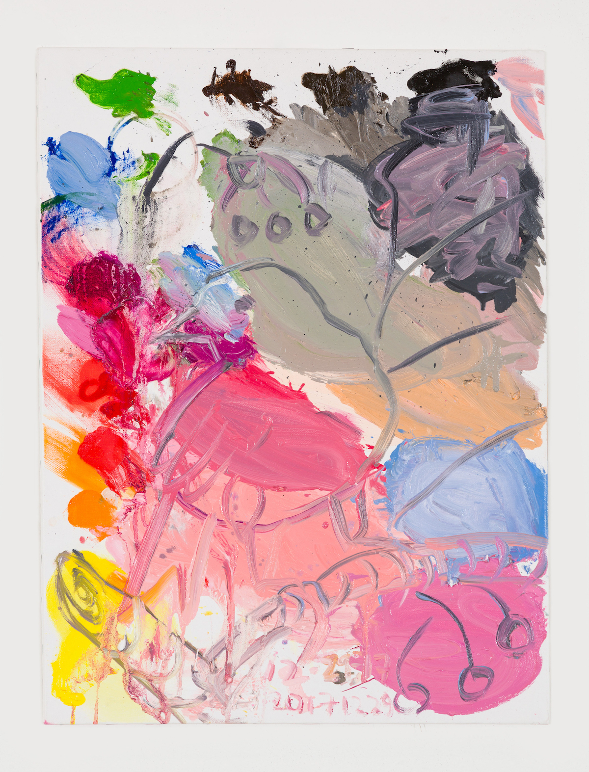14-Untitled (Pink Canary, on Blue, on Pink), 2017-1